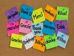gracias postits