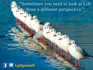 ¡Es necesario ver las cosas desde una perspectiva diferente!